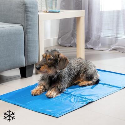 Kühlmatte für Haustiere 90 x 50 cm