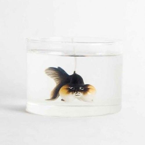 Candle Bubble Eye Goldfish Black | Cranberry & Lavender & White Peach