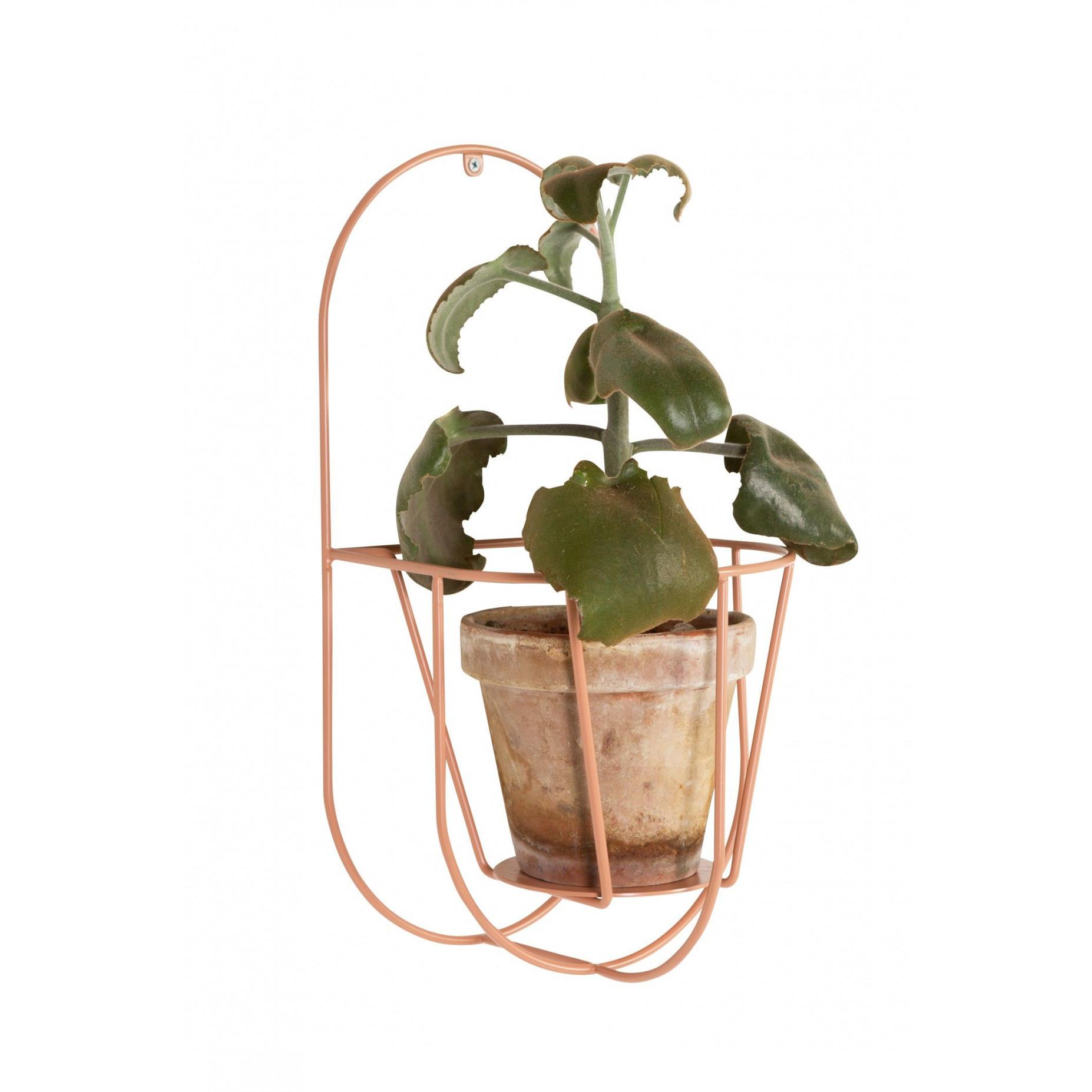 Wand Cibele   Pflanzenaufhänger Staubig Pfirsich-Klein