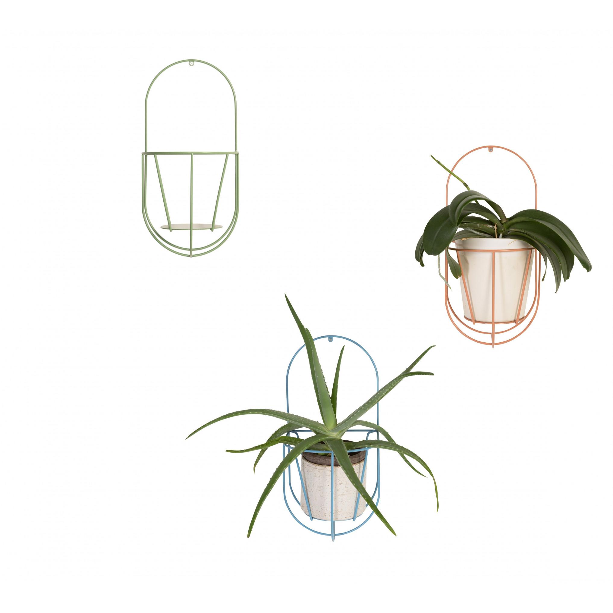 Mauer Cibele | Pflanzenaufhängung Meer Grün-Klein