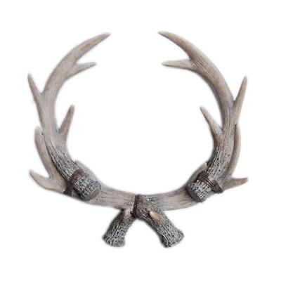Elk Antlers Wall Art