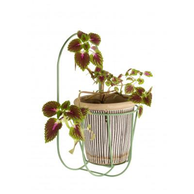 Pflanzbügel Wand Cibele | Grün