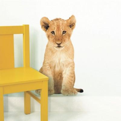 Wandaufkleber Safari-Freunde | Löwenjunge