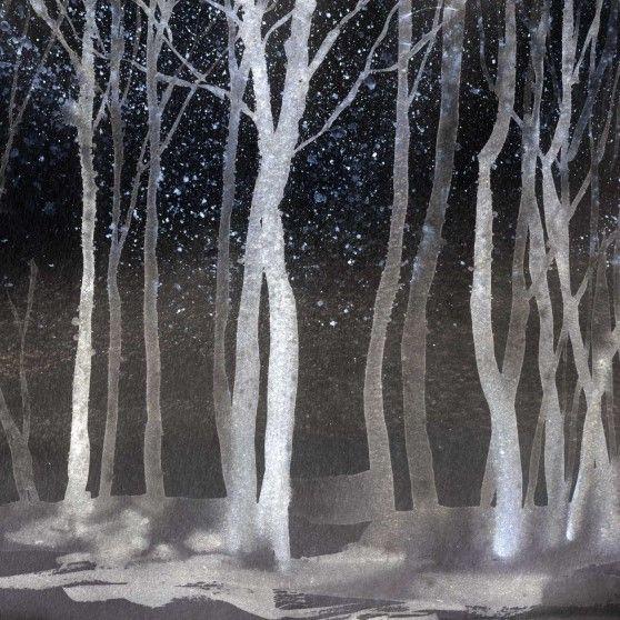 Tapete Aquarell Wald | Nacht