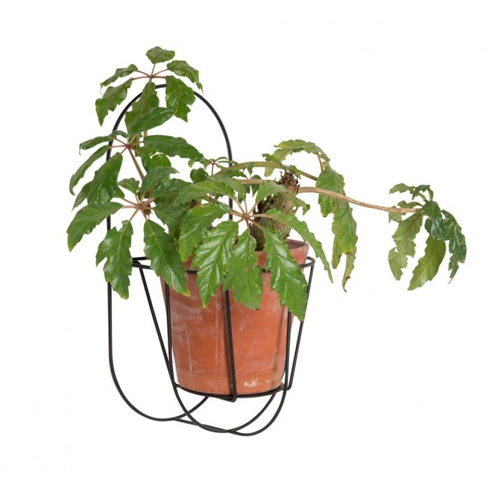 Wall Cibele | Plant Hanger Black-S