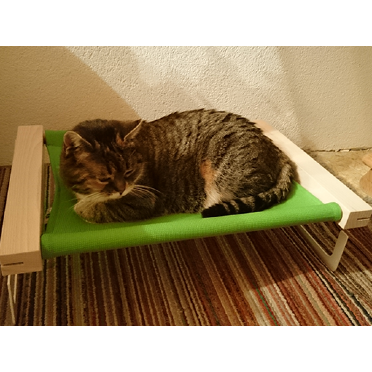 Katzenhängematte | Grün