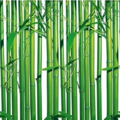 Wall Stickers (4 parts, 183 x 254 cm)   Bamboo