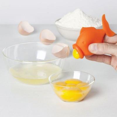 Egg Yolk Fish