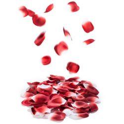 Pétales Parfumés Rose Petal Explosion Set de 100 Pièces   Rouge