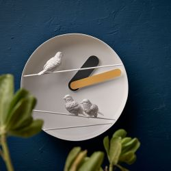 Uhrensperling | Grau & Gelb