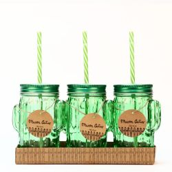 Mason Jar Cactus | Set of 3