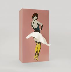 Tissue Box Tissue Up Girl | Rosa