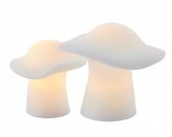 Set van 2 Paddenstoelen | Wit