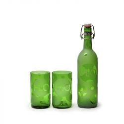 Set 1 Flasche & 2 Gläsern | H2O