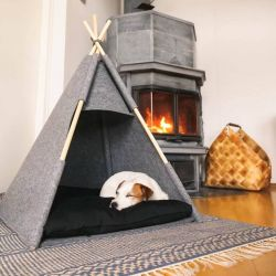 Felt Teepee Cat/Dog