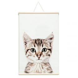 Magnetic Poster Ready To Roll | Cat