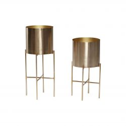 Plant Holder Set of 2 | Brass
