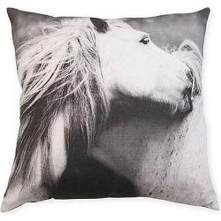 Kissen für spielende Pferde