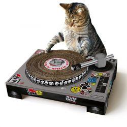 Kratzer-Plattenspieler für Katzen