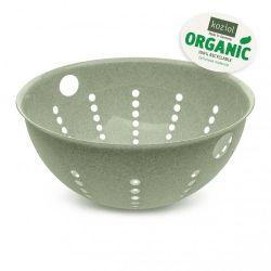 Panier à Pâtes | Organic Green