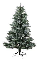 Weihnachtsbaum Anton