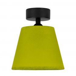 Ceiling Lamp Iro 1 CP | Black/Pistachio
