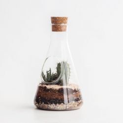 Chemie-Terrarium-Bausatz