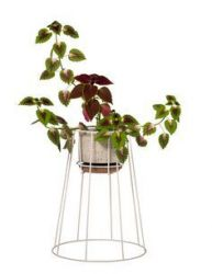 Plant Stand Cibele | White