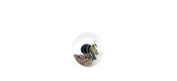Vogelfutterröhre Mini | 2er-Satz