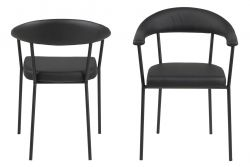 Carver Ida Set of 2 | Black