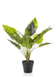 Kunstpflanze II