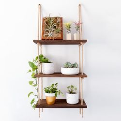 Wall Shelf / Ladder | Walnut