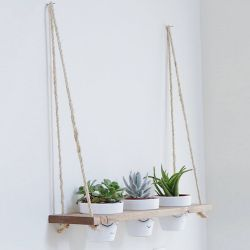 Wall Shelf / Plant Holder | Spruce Wood