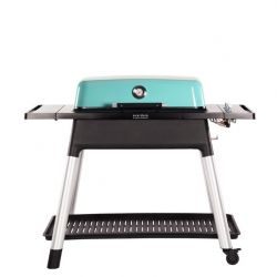 Gas BBQ Furnace | Blue