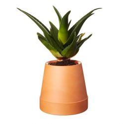 Flipped Plant Base