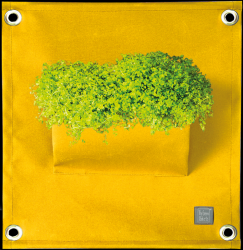 Plant Bag 'Green Pockets' AMMA | Yellow