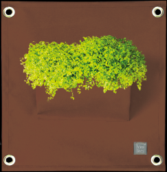 Plant Bag 'Green Pockets' AMMA | Brown
