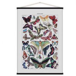 Vintage-Poster | Schmetterlinge