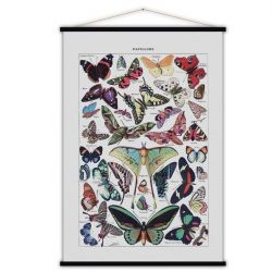 Vintage Poster | Butterflies