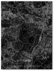 Metalen Wanddecoratie | Stadsplattegrond | Tokyo