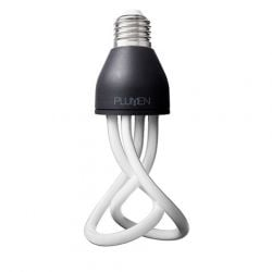 1 Bulb of Baby Plumen 001