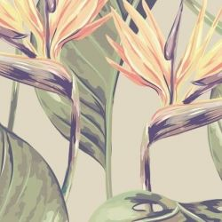 Wallpaper The Bird of Paradise | Brown & Green