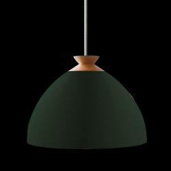Hängeleuchte Helle Blüte | Grün, staubige Olive