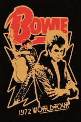Poster Bowie World Tour | 30 x 40 cm