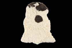 Rug Wild Sheep Long Hair | White & Brown