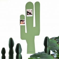 Magnetic Board | Cactus L