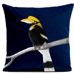 Pillow Cover | Calao