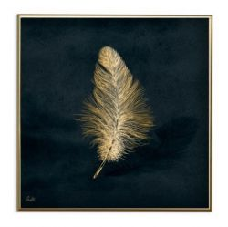 Poster 24K Gold Feather Small | Dark Blue