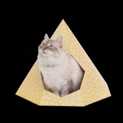 Cat Tipi   Vanilla