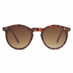 Sunglasses Charles in Town | Tortoise
